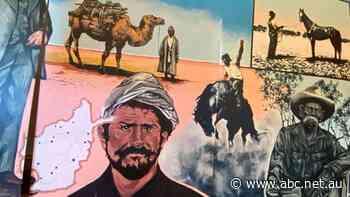 Broken Hill's award-winning artist Jodi Daley completes murals honouring Milparinka's history - ABC News