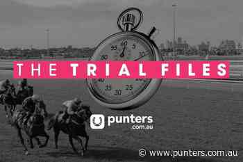 The Trial Files: Cranbourne preview, Wednesday August 5 - Punters