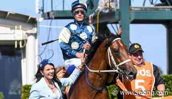 Tagaloa cruises in Cranbourne hit-out - Racing.com