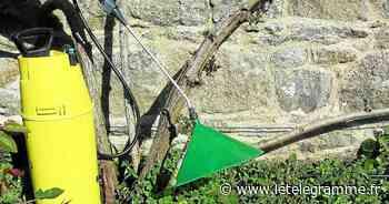 Les communes du pays d'Auray se positionnent sur les pesticides - Le Télégramme