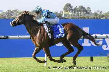 Aquis tipped to dominate The Rosebud - Just Horse Racing