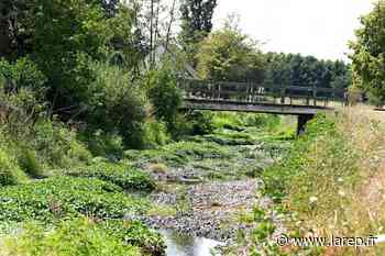 Restrictions - De nouvelles zones du Loiret placées en vigilance rouge sécheresse - La République du Centre