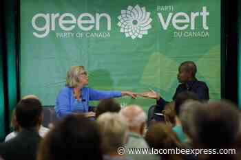 Paul outpaces opponents in Green party leadership fundraising efforts - Lacombe Express