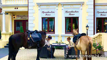 Restaurantbesuch mit Pferden - fehmarn24