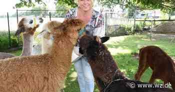 Sandra-Lea Freimuth hält auf einem Hof in Nettetal eine Alpaka-Herde - Westdeutsche Zeitung