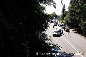 Un piéton décède à Lambersart, percuté par un camion - France 3 Régions