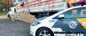 Polícia apreende 2,7 toneladas de maconha em Presidente Prudente - Folha da Região
