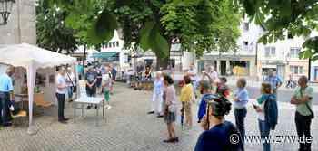 Drei Ideen für einen neuen Spielplatz in Welzheim: Der Gemeinderat hat einen klaren Favoriten - Welzheim - Zeitungsverlag Waiblingen - Zeitungsverlag Waiblingen