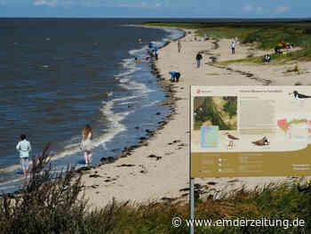 Nur der Strand ist noch frei am Rysumer Nacken - Emder Zeitung