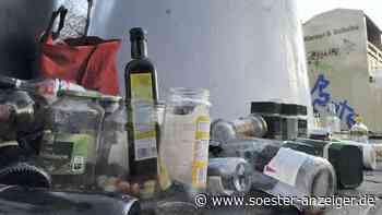 In den Haushalten im Kreis Soest fällt mehr Müll an - Soester Anzeiger