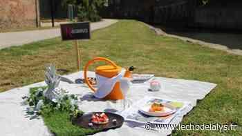 Aire-sur-la-Lys : tentez le pique-nique gastronomique en bord de Lys - L'Écho de la Lys