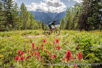 Celebrate wildflowers next week in Revelstoke – Revelstoke Review - Revelstoke Review