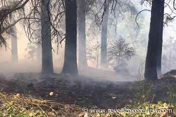 Wildfire near Merritt creates smoke for drivers on Coquihalla - Revelstoke Review