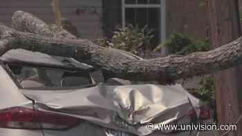 Isaías provocó cinco tornados en distintas áreas de Nueva Jersey y Pensilvania - Univision