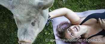 Mit Tieren entspannen - Traunsteiner Tagblatt