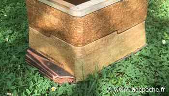 Tarbes. Embelium crée une mini-ruche 100 % végétale - ladepeche.fr