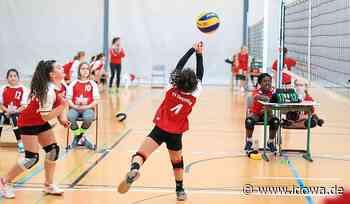 Dingolfing: Volleyball-Talente gesucht - Stadt Dingolfing - idowa