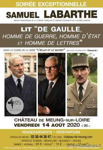 Samuel Labarthe lit De Gaulle Château de Meung sur Loire vendredi 14 août 2020 - Unidivers