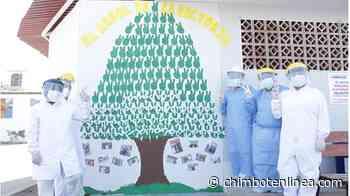 Trabajadoras sociales de hospital de Chimbote implementan el árbol de la victoria en área covid-19 - Diario Digital Chimbote en Línea