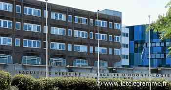 En faculté de médecine, à Brest, la requête en référé d'une étudiante rejetée - Le Télégramme
