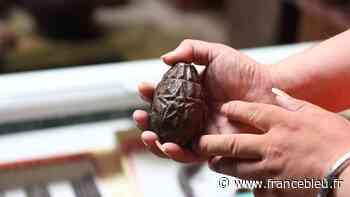 Quimper : une grenade retrouvée chez Emmaüs... elle était factice - France Bleu
