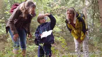 Walddetektive sind den Geheimnissen der Region auf der Spur - come-on.de