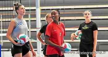 Volley. La « semaine zéro » du Quimper Volley - Le Télégramme
