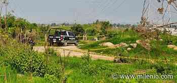 Encuentran a hombre muerto en colonia de Zapopan - Milenio