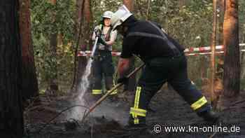 Erhöhte Waldbrandgefahr: Verletzte Feuerwehrleute, Naturschutzgebiet in Flammen