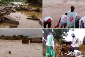 Residents cry for help as heavy rainfall destroys houses, farmlands in Zamfara - Legit