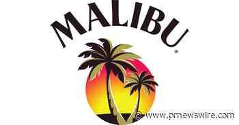Malibu & DJ Dillon Francis Remix an Internet Sensation into a Summer Anthem You Can't Ignore - PRNewswire