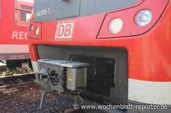 Update: Die weiteren Vorarbeiten für den Bau von Lärmschutzwänden in Neustadt beginnen: Vier neue Lärmschutzwände für Neustadt - Wochenblatt-Reporter