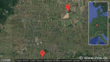 Kirrweiler (Pfalz): Stau auf A 65 zwischen Edenkoben und Neustadt-Süd in Richtung Ludwigshafen - Staumelder - Zeitungsverlag Waiblingen