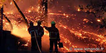 Le feu de forêt qui a brûlé 165 hectares à Anglet, sur la côte basque, a été « maîtrisé » - Le Monde