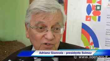 Svimez: Così il quadrilatero Zes (Napoli, Bari, Taranto e Gioia Tauro) può rilanciare lo sviluppo del Sud - Il Denaro