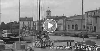 MARSEILLAN - A la découverte du panorama des activités du village en 1972 ! - Hérault-Tribune