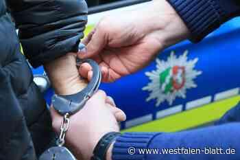 Paderborn: Polizei nimmt Drogendealer im Riemekepark fest