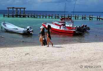 Playa del Carmen: Más de 70 familias de turisteros siguen en crisis con la nueva normalidad - sipse.com