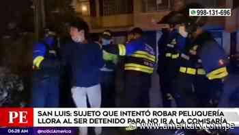 San Luis: Sujeto que intentó robar peluquería lloró al ser detenido - América Televisión