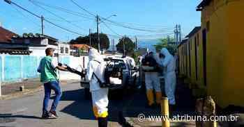 Santos aplica inseticida contra Aedes aegypti em mais de 260 imóveis na Zona Noroeste - A Tribuna