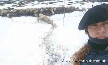 Leticia, la docente que a caballo rescató ovejas en Mina de Indio - Diario EL CHUBUT
