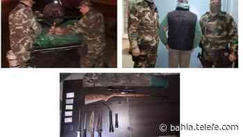 Villarino: detuvieron a un hombre que transportaba a tres ovejas muertas - Telefe Bahia Blanca