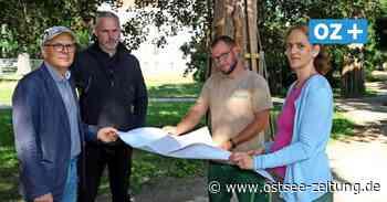 Bad Doberan: Palaisgarten wird umgestaltet - Ostsee Zeitung