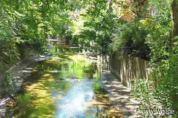 Münster: Ufermauer an der Aa muss neu gebaut werden