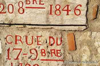 Sortie naturaliste accompagnée : Saint Denis en Val inondée qui l'eût « crue » Maison de Loire du Loiret Jargeau - Unidivers