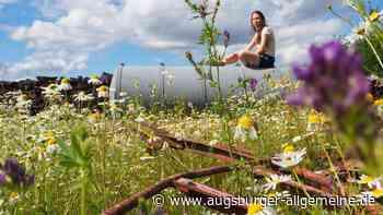 Fotoaktion: So schön ist der Urlaub dahoam in der Blumenwiese - Augsburger Allgemeine