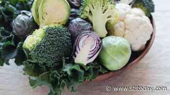 Neman: Plant your garden now for fall harvest - STLtoday.com