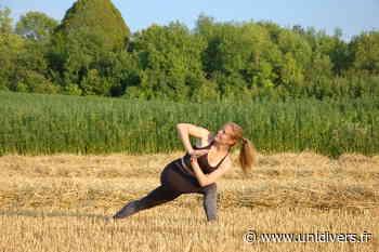 Atelier Initiation au Vinyasa Yoga samedi 29 août 2020 - Unidivers