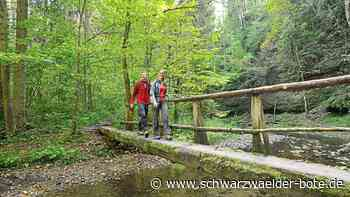 Donaueschingen: Heimat hat noch so einiges zu bieten - Donaueschingen - Schwarzwälder Bote