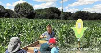 J'ai testé pour vous : Pop Corn Labyrinthe à Ploemel - Le Télégramme